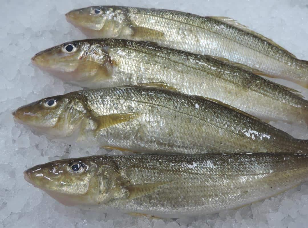 whole-fish-2